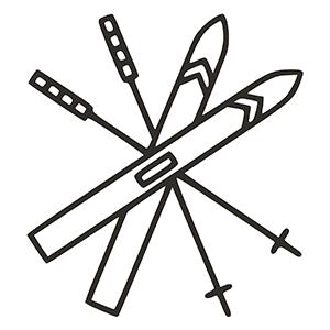 Esquís i pals